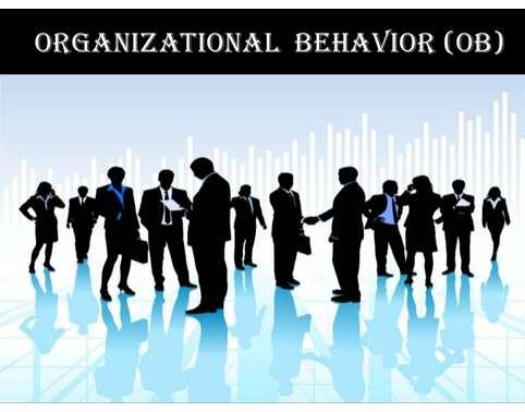 Organisational Behaviour Assignment Help