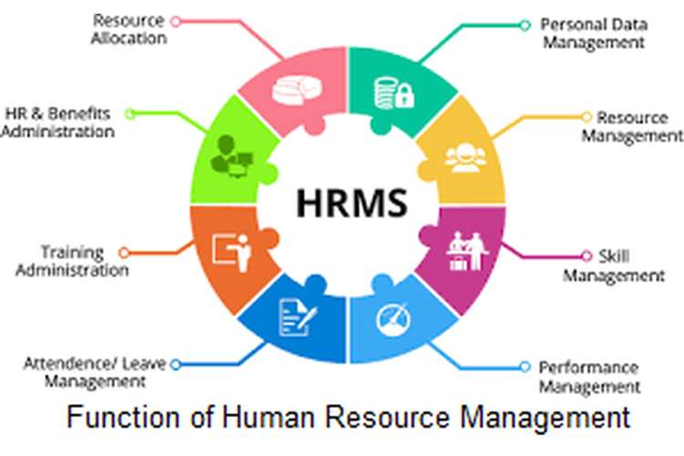 Function of Human Resource Management Assignment