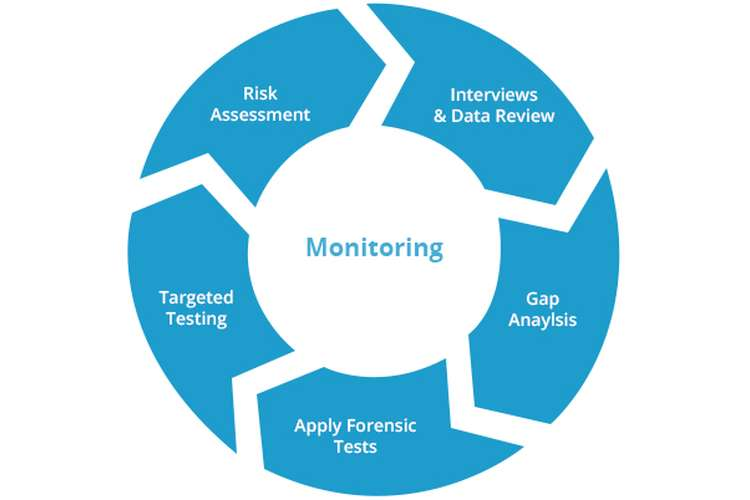 Implementation plan and monitoring strategies