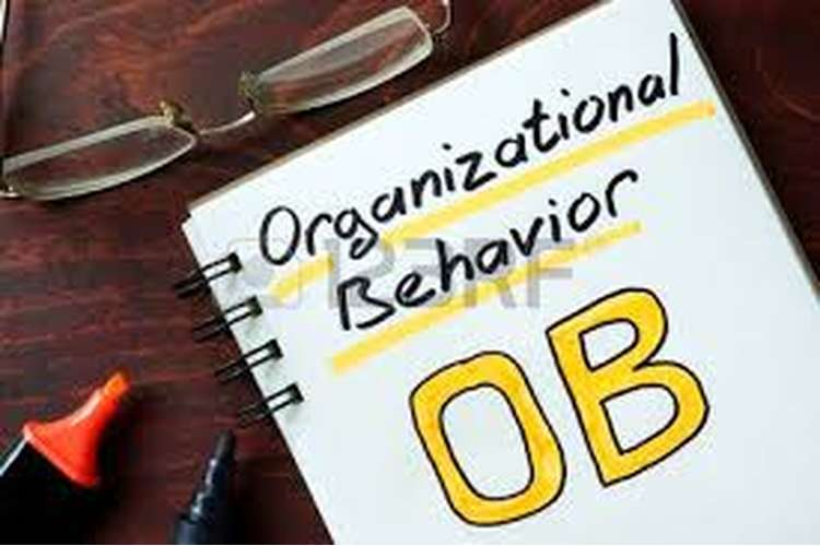 Unit 3 Assignment on Organization Behaviour