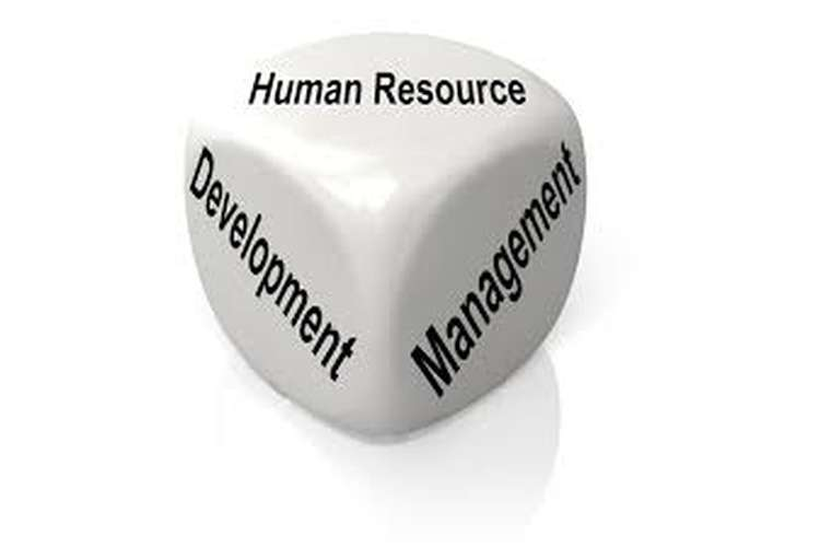 Human Resource Development Distinction Copy