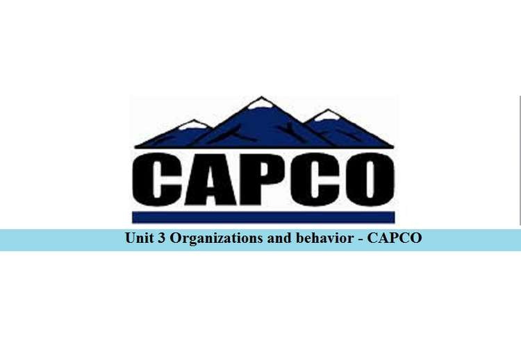Organizations and behavior - CAPCO