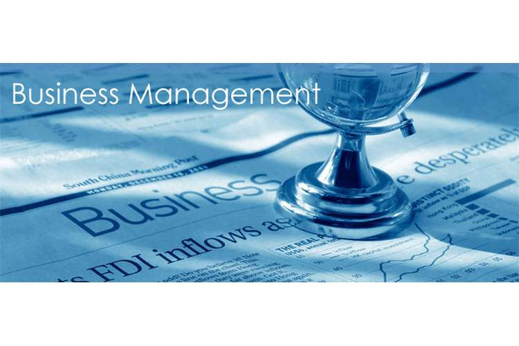 CIS5101 Management of Business assignment