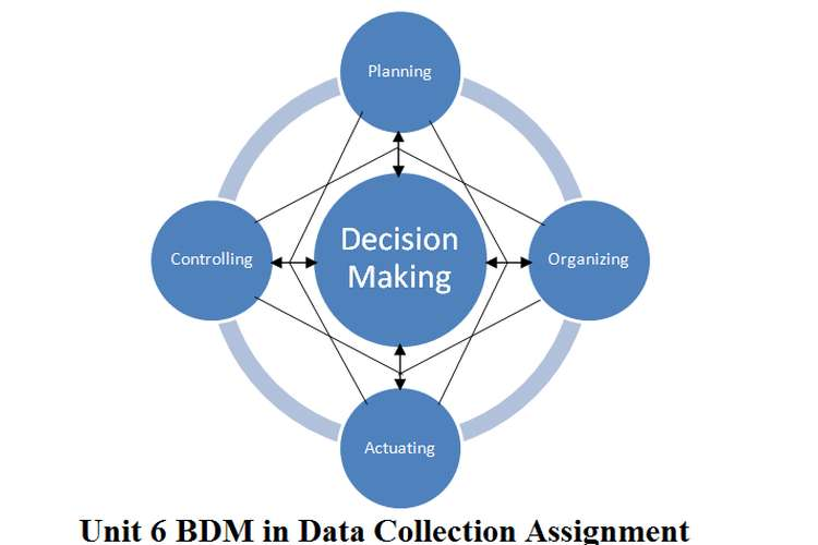 Unit 6 BDM in Data Collection Assignment