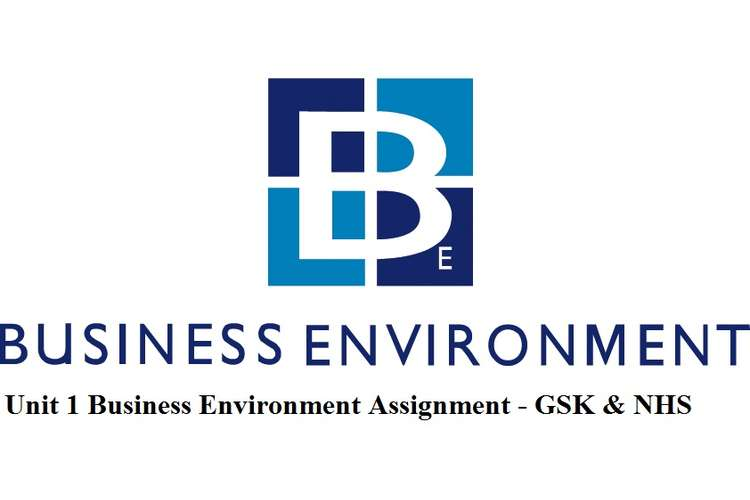Unit 1 Business Environment Assignment - GSK & NHS