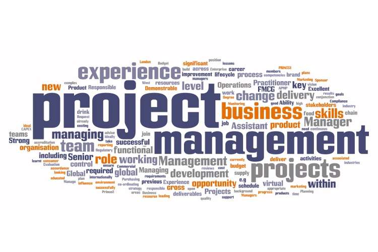 BCO6656 IT Project Management Assignment