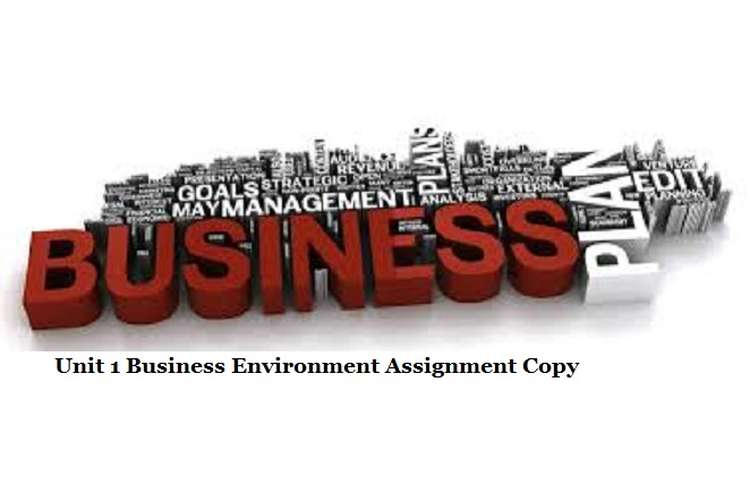 Business Environment Assignment Copy