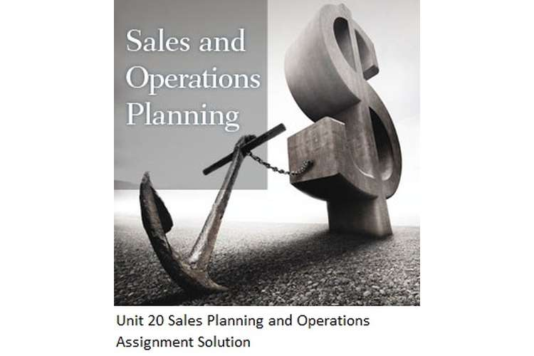 Unit 20 Sales Planning and Operations Assignment Solution