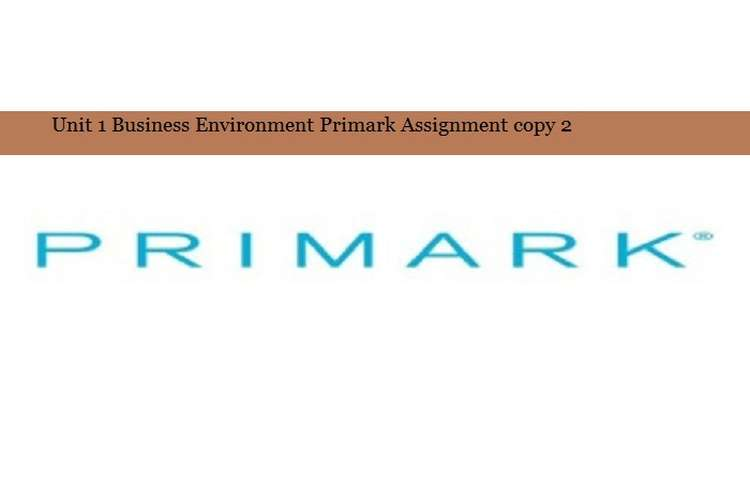 Business Environment Primark Assignment copy 2