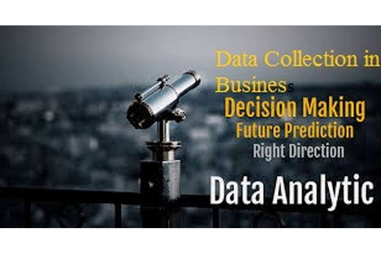 Unit 6 Data Collection in Business Decision Making Assignment