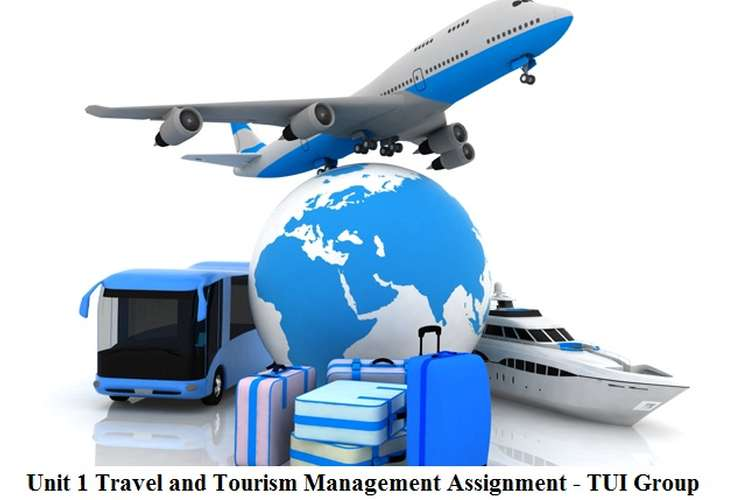 Unit 1 Travel and Tourism Management Assignment - TUI Group