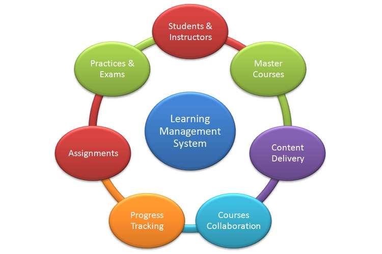 Staff Management System Assignments Solution
