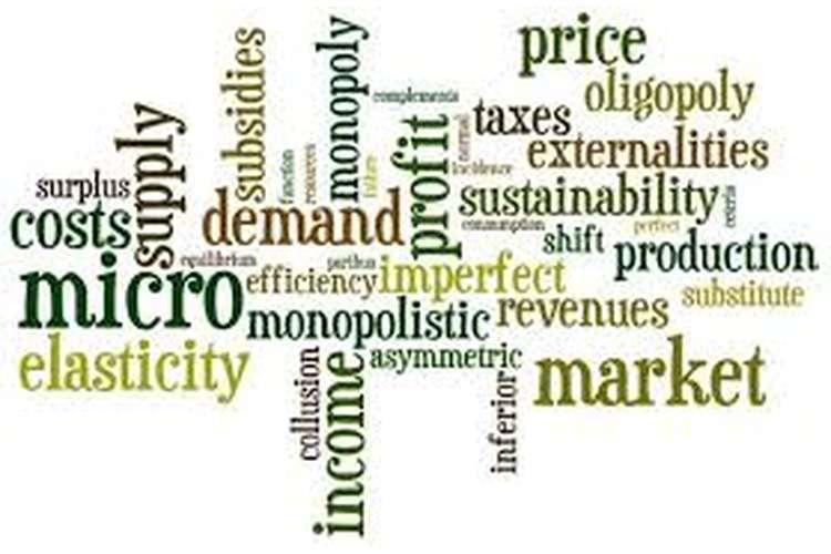 ECO101 Principles of Microeconomics Assignment