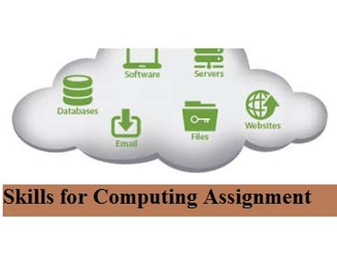 Skills for Computing Assignment