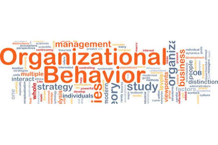 Organisational Behavior Assignment Help