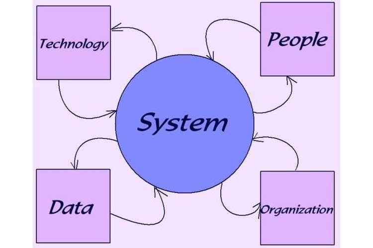 Professional Skills For System Analysis OZ Assignments