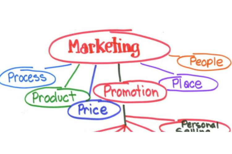 MKG701 Marketing Plan Assignment Help