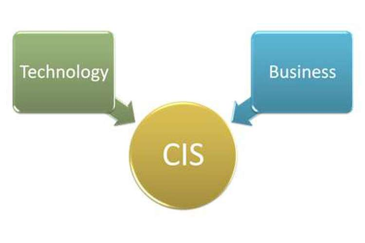 CIS8100 Computer Information System Assignment Help