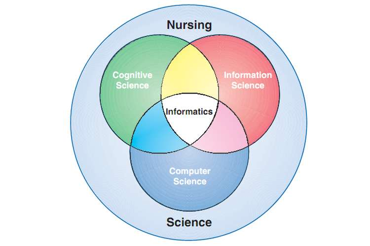 NURS250 Nursing Science Assignments Solution