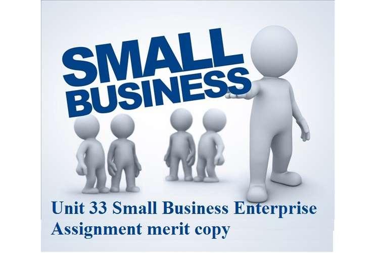 Unit 33 Small Business Enterprise Assignment merit copy