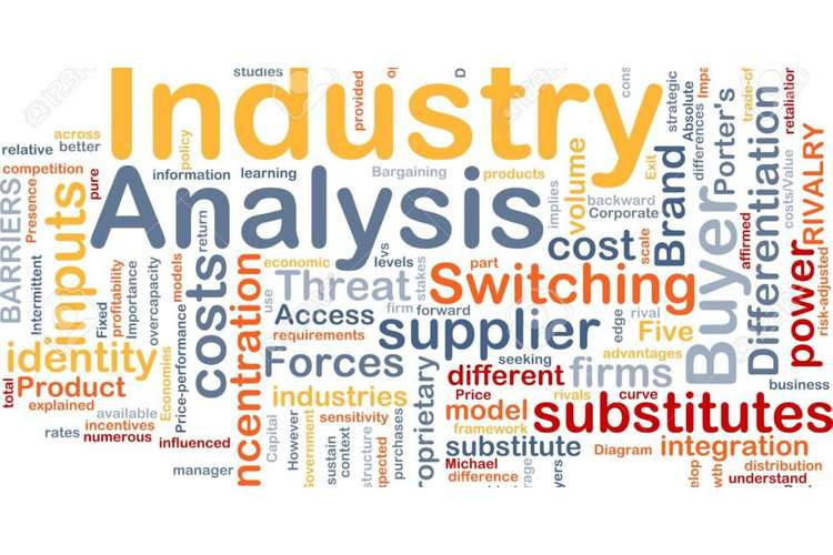 GSBA509 Industry Analysis Assignment Solutions