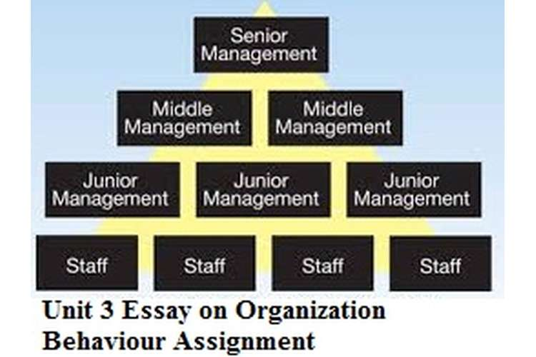 organizational behaviour assignment management essay Talking about the assignment help for organizational behavior, the staff  they  have a strong grip on the concepts related to of organizational behavior and   behavior is pursued by students who need general management assignment   we offer help regarding custom essay, coursework, thesis and dissertation help.