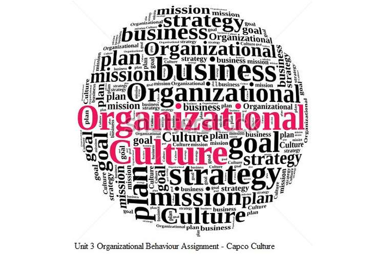 Unit 3 Organizational Behaviour Assignment - Capco Culture
