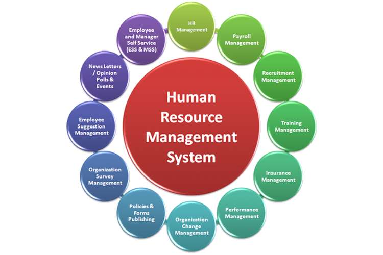 Managing Human Resources Oz Assignments