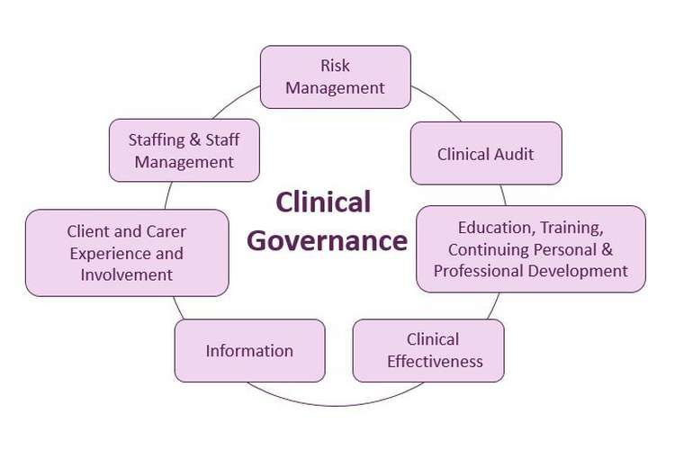 NURS2006 Clinical Governance and Practice Assignment