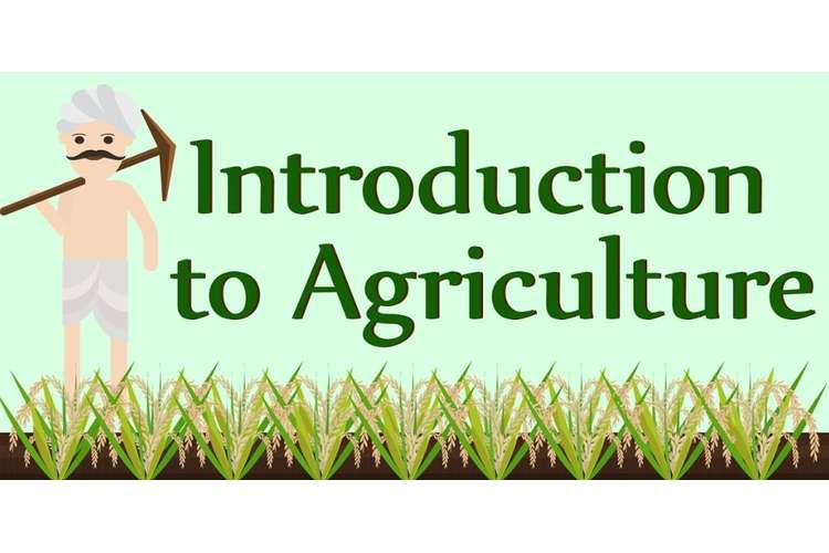 Introduction of Agriculture Oz Assignment