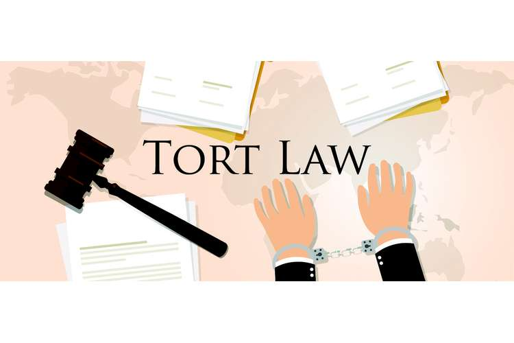 MGMT1601 Tort Law Oz Assignment Help