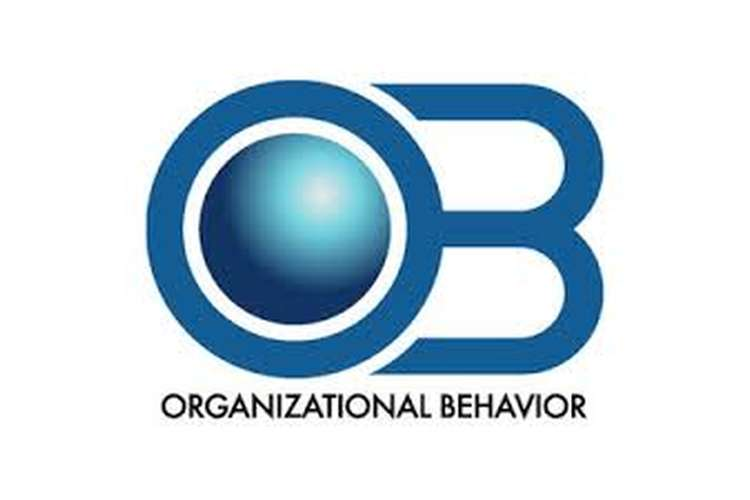 Unit 3 Essay on Organization and Behaviour Assignment