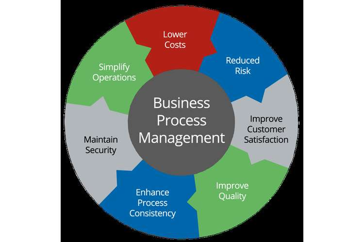 MIS352 Business Process Management Oz Assignment