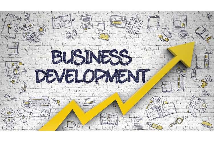 Business Development Oz Assignment Help