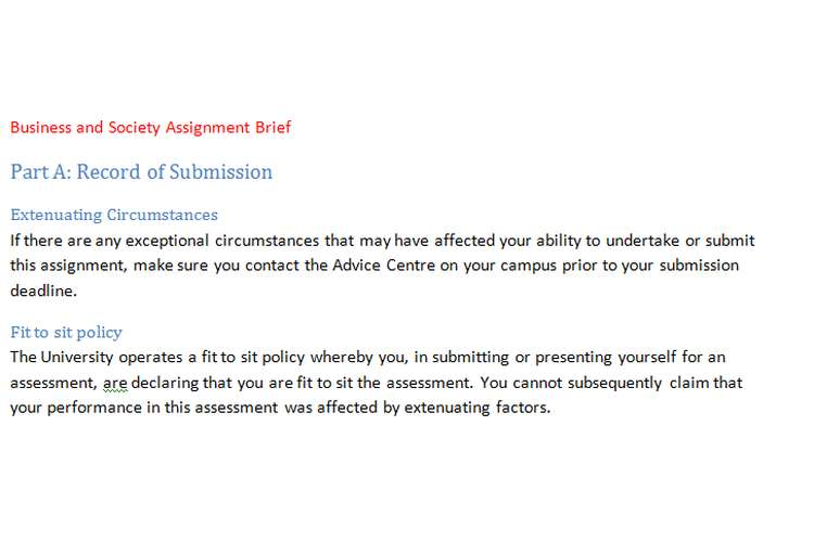 Business and Society Assignment Brief