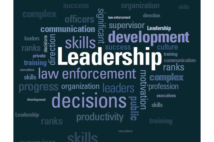 Decision Making in Organizational Leadership Oz Assignments