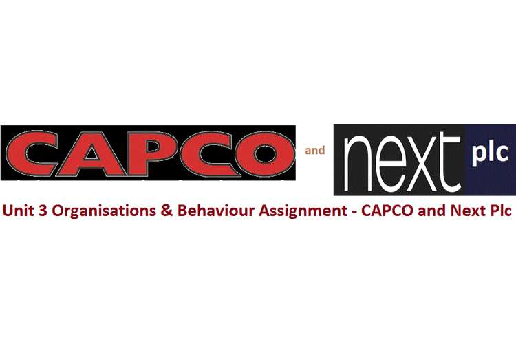 Unit 3 Organisations & Behaviour Assignment - CAPCO and Next Plc