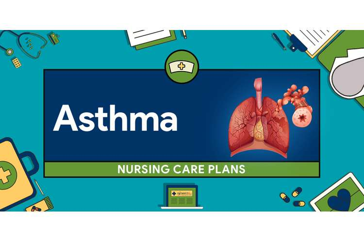 Asthma Nursing Health Care Plan Assignments Solution
