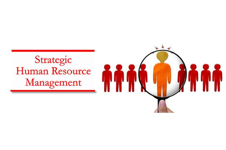 Strategic Human Resource Management Assignment