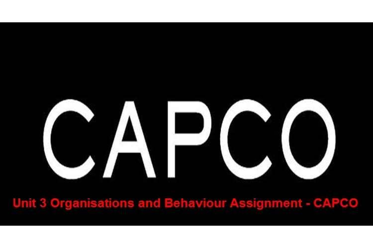 Unit 3 Organisations and Behaviour Assignment - CAPCO
