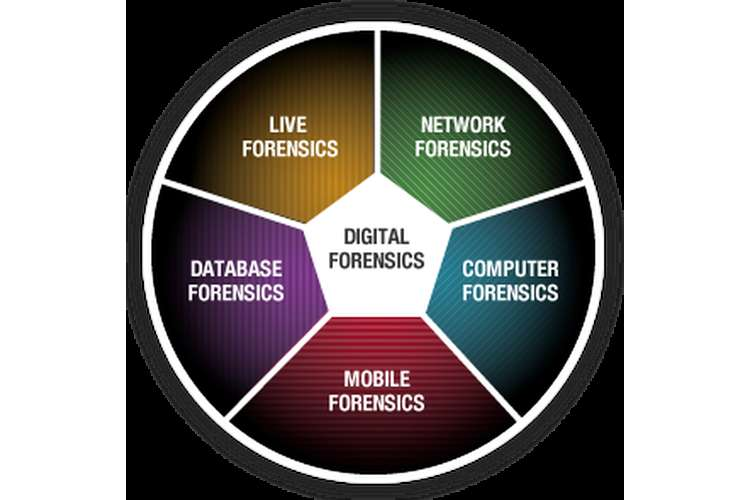 Unit 41 Digital Forensics Assignment Assignment Services
