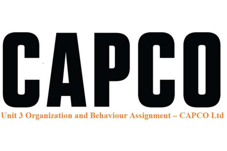 Unit 3 Organization and Behaviour Assignment – CAPCO Ltd
