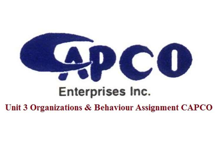Unit 3 Organizations & Behaviour Assignment - CAPCO