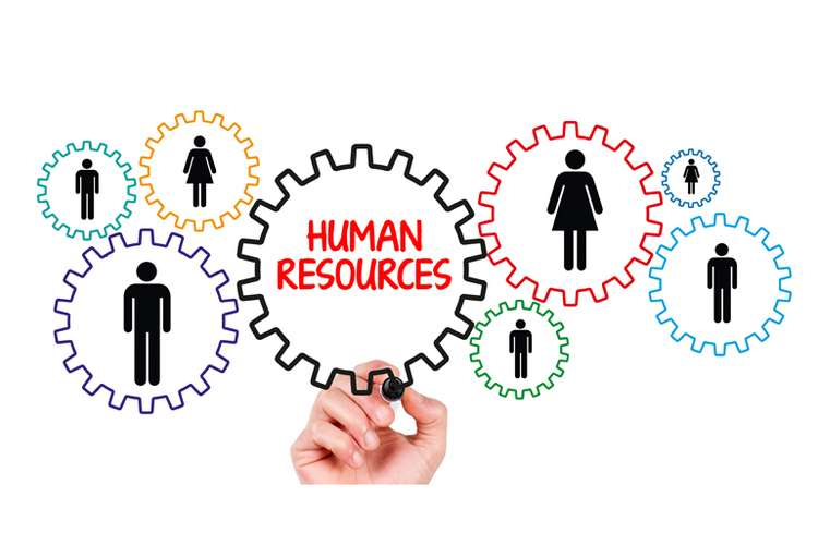 Human Resource Management OZ Assignments