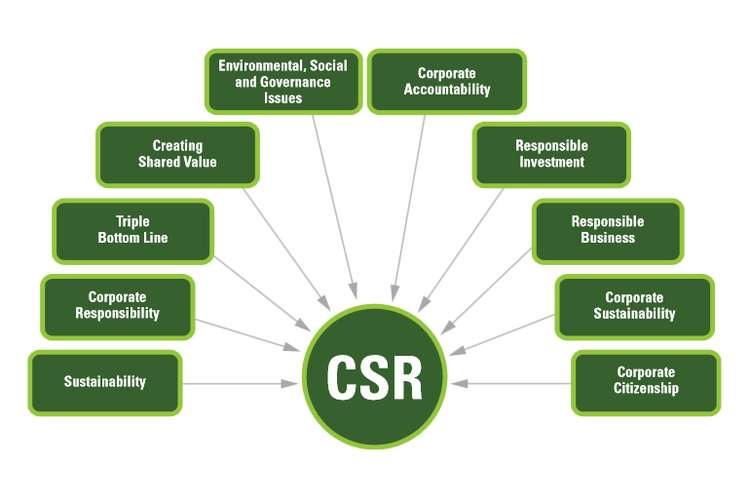 Corporate Social Responsibility Assignments Solution