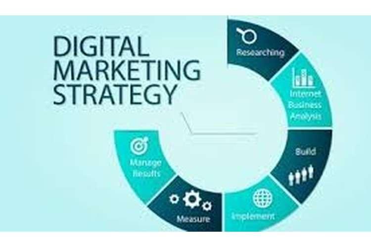 Digital Audit Target Audience Analysis Assignment Help