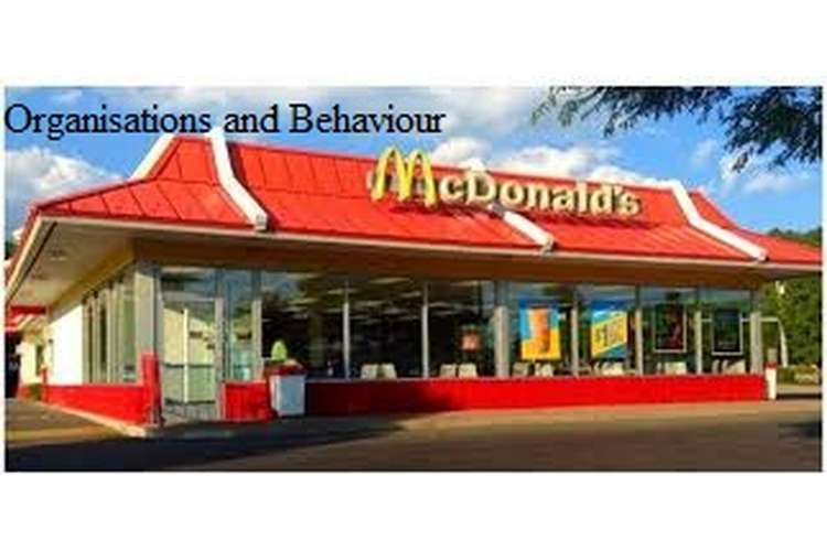 Unit 3 Organisations and Behaviour Assignment CAPCO & McDonald's