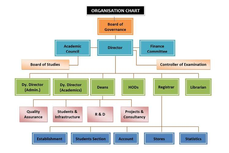 Organization Structure and Design Oz Assignment