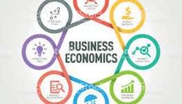HI5003 Business Economics Assignment Help