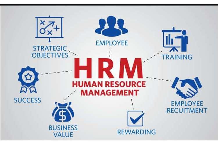 HRM502 Human Resource Management Assignment